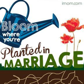 Bloom Where You're Planted in Marriage