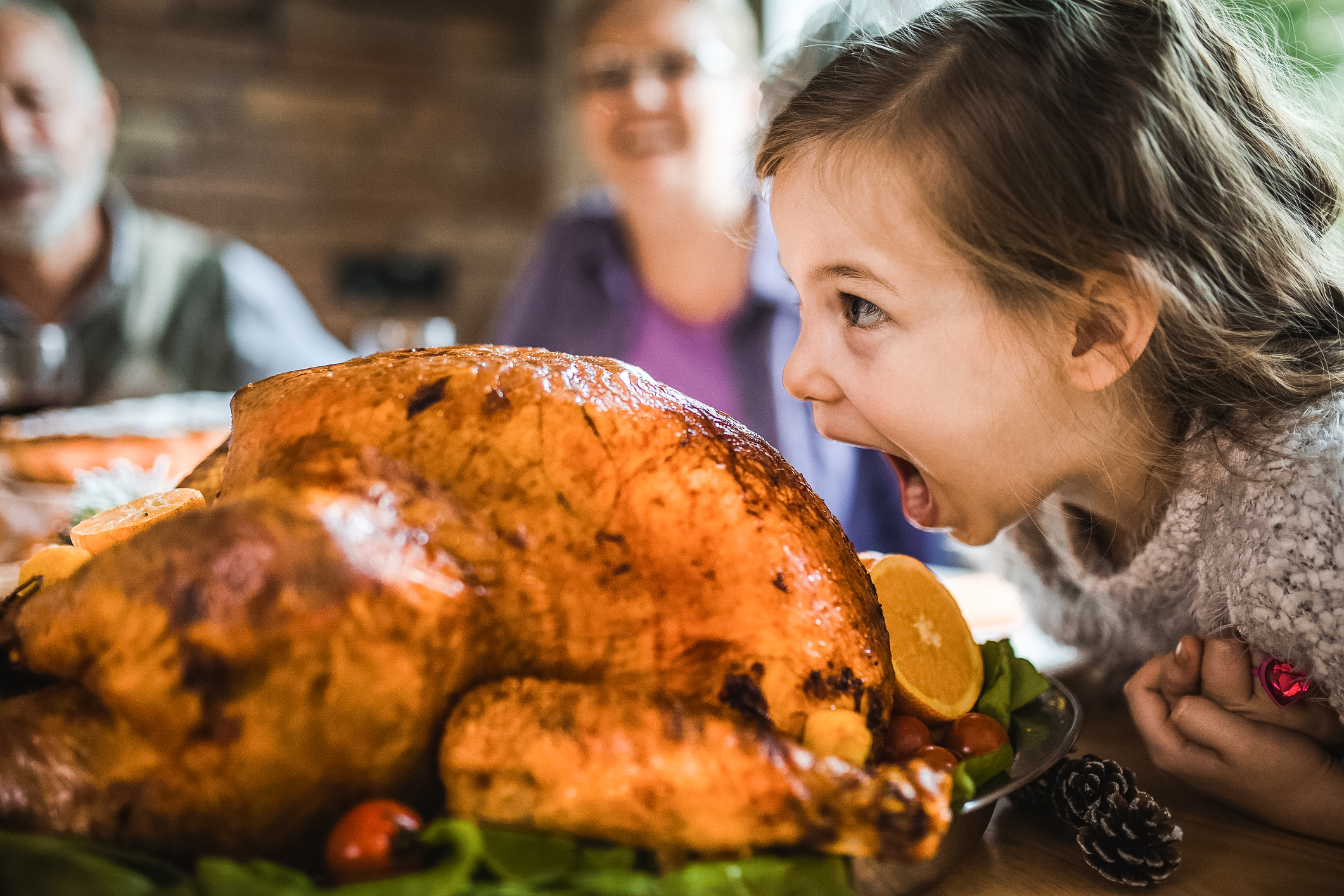 Cute little girl having fun while about to bite a stuffed turkey during Thanksgiving dinner in dining room.